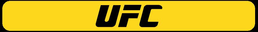 UFC bets