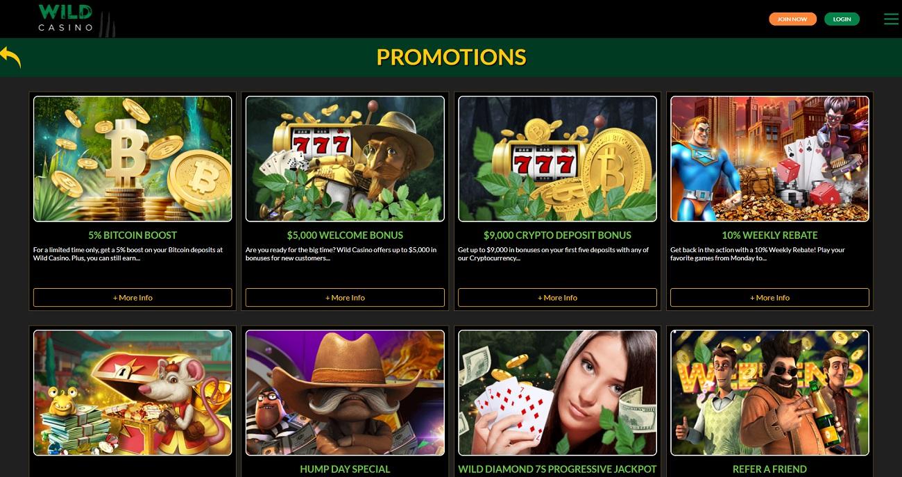 Wild Casino bonuses