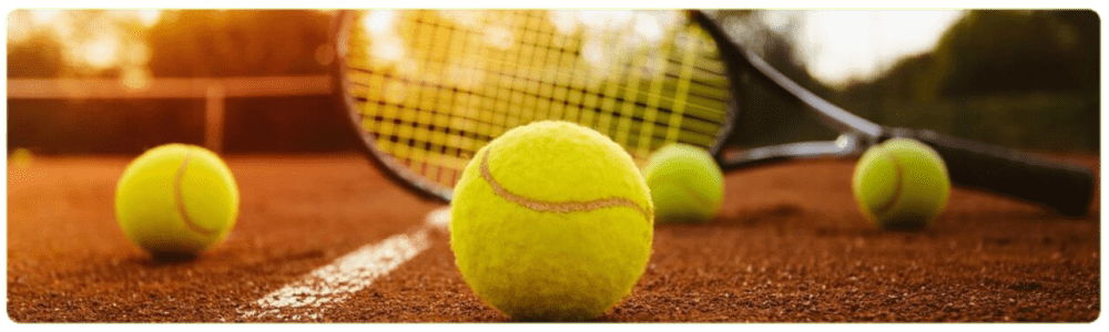 Borle tennis betting. Strategies and Tips
